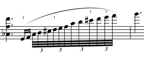 Sibelius1